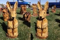 Bunny Rabbit - 01